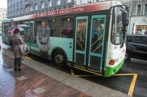 В результате экстренного торможения автобуса пострадали 7 пассажиров