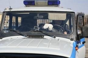 В Ленобласти сбитую женщину переехали несколько грузовиков