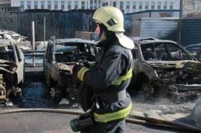 Полиция Москвы ищет поджигателей четырех иномарок