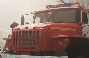 В Петербурге один водитель пожарной машины убил другого из ружья