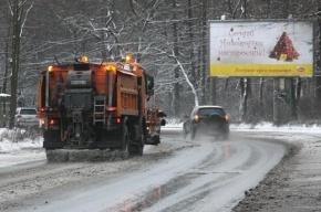 Синоптики рассказали, когда в Петербурге ляжет снег