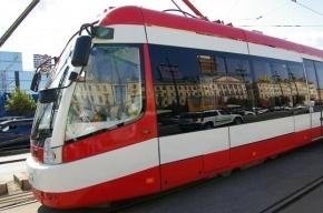 Проезд на общественном транспорте Петербурга в 2014 году не подорожает