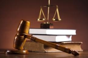 За нападение на пристава жителя Петербурга приговорили к 3,5 годам условно