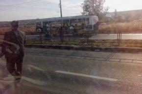 Водителя взорванного в Волгограде автобуса наградят за героизм
