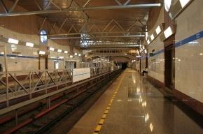 Пенсионер избил полицейского на станции метро «Парнас»
