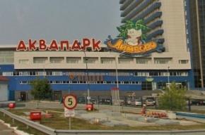 Полиция предотвратила массовую драку в Екатеринбурге
