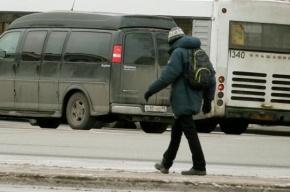 Полиция Петербурга ищет пропавшего десятилетнего мальчика
