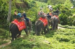 В Таиланде хотят обложить туристов налогом с января 2014 года