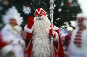 Деду Морозу запретили нести олимпийский огонь в своем костюме