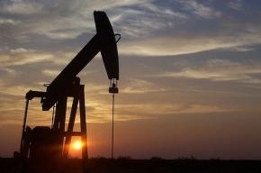В Алжире обнаружено крупнейшее за 20 лет месторождение нефти