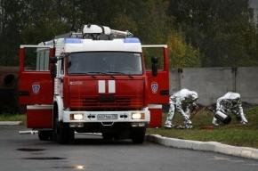 В Ленобласти найден мертвым юноша, ранее заблудившийся в лесу