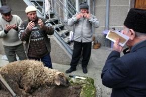 Мусульмане резали баранов на Курбан-байрам в Петербурге