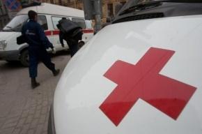 В Ленобласти погиб водитель, сбитый на обочине