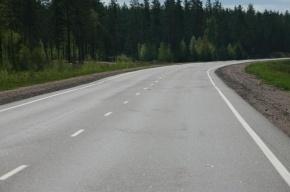 В ДТП на трассе «Скандинавия» погибли два человека
