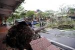 "тайфун ""Хайян"" во Вьетнаме 11 ноября : Фоторепортаж"