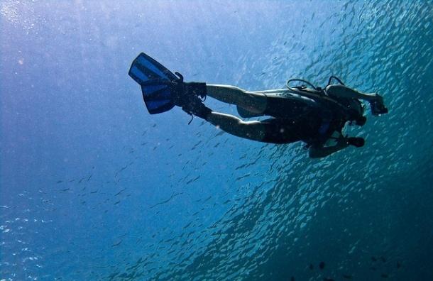 В Суздальском озере утонул владелец «Сигма Моторс» Павел Громов