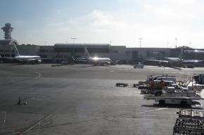 746 авиарейсов отложены из-за стрельбы в аэропорту Лос-Анджелеса