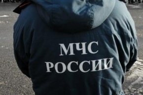 На проспекте Большевиков столкнулись два маршрутных такси