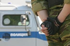 Бизнесмена ограбили на 3,7 млн рублей на Биржевом мосту
