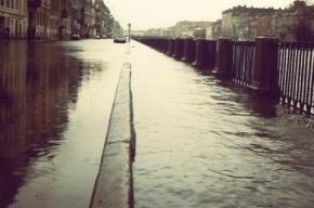 Наводнение в Санкт-Петербурге: пик подъема воды ожидается к вечеру