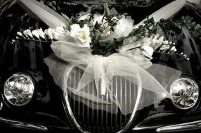 Стажеров полиции избили на цыганской свадьбе на Ставрополье