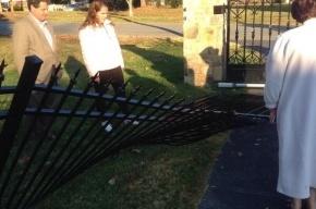 Олень сломал забор дома Александра Овечкина
