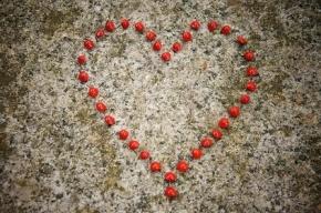 Ученые: Настоящая любовь бывает у человека дважды
