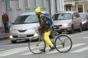 В Петродворцовом районе водитель сбил велосипедиста и скрылся