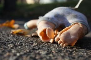На Богатырском проспекте умер полугодовалый младенец