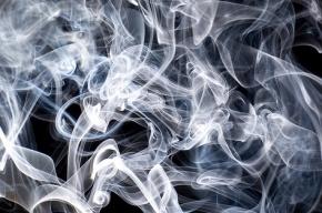 ЗакС Петербурга одобрил запрет курения в коммуналках