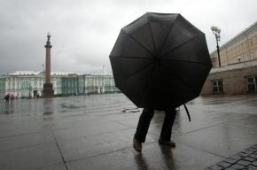 МЧС: В Петербурге ожидаются дождь и сильный ветер