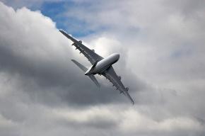 Самолет вернулся в «Пулково» из-за птицы, попавшей в двигатель