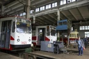 Все трамваи Петербурга перекрасят в новые цвета