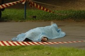 У бара на Комендантском проспекте обнаружен окровавленный труп