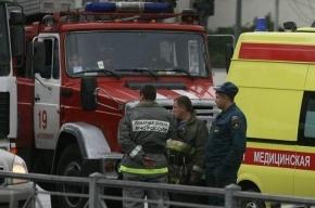 В Иркутской области столкнулся с лесовозом автобус с детьми