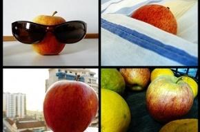 Ученые: Одно яблоко в день способствует омолаживанию организма