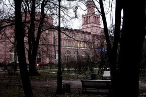 В Петербургском университете впервые вручили дипломы докторов PhD