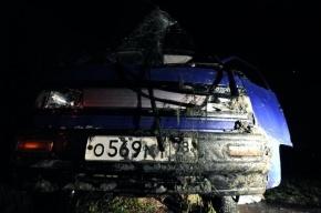 В Ленобласти при падении машины с моста погибли двое