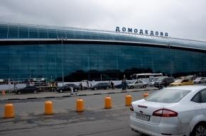 В «Домодедово» самолет выехал за пределы взлетной полосы