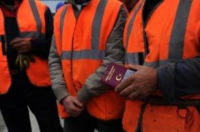 Больше 1,6 млн иностранных работников привлекут в Россию в 2014 году