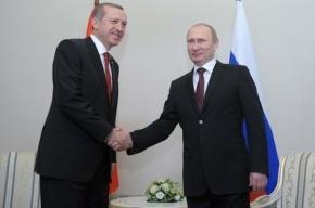 В Стрельне проходит встреча Путина и Эрдогана