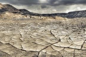 Ученые: в ближайшие десятилетия жизнь на Земле резко ухудшится