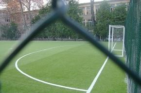В 2014 году в Петербурге появятся 36 новых школьных стадионов