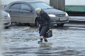 Витебский проспект затопило холодной водой