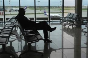 Неизвестный обстрелял мужчину в аэропорту «Шереметьево»