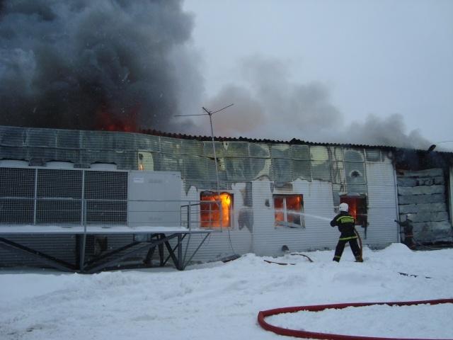 В Томске в сгоревшем инкубаторе птицефабрики найдены два тела : Фото