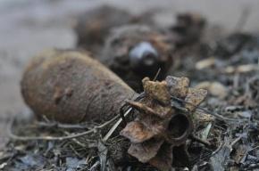 На газоне Будапештской обнаружены две мины времен ВОВ