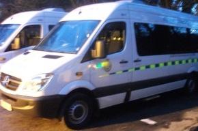 В Петербурге микроавтобус сбил семилетнего мальчика