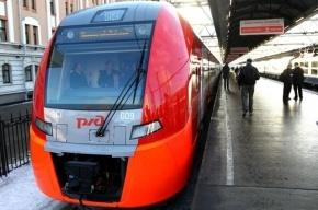 30-31 декабря дополнительные скоростные поезда «Ласточка» отправятся из Москвы в Петербург