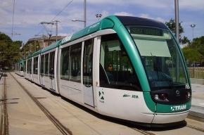 Петербург купит трамваи и троллейбусы за 700 млн рублей